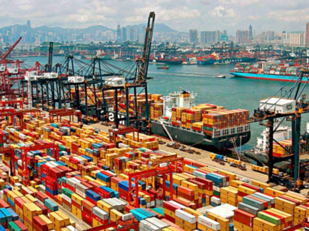 Export -Loading teat dips