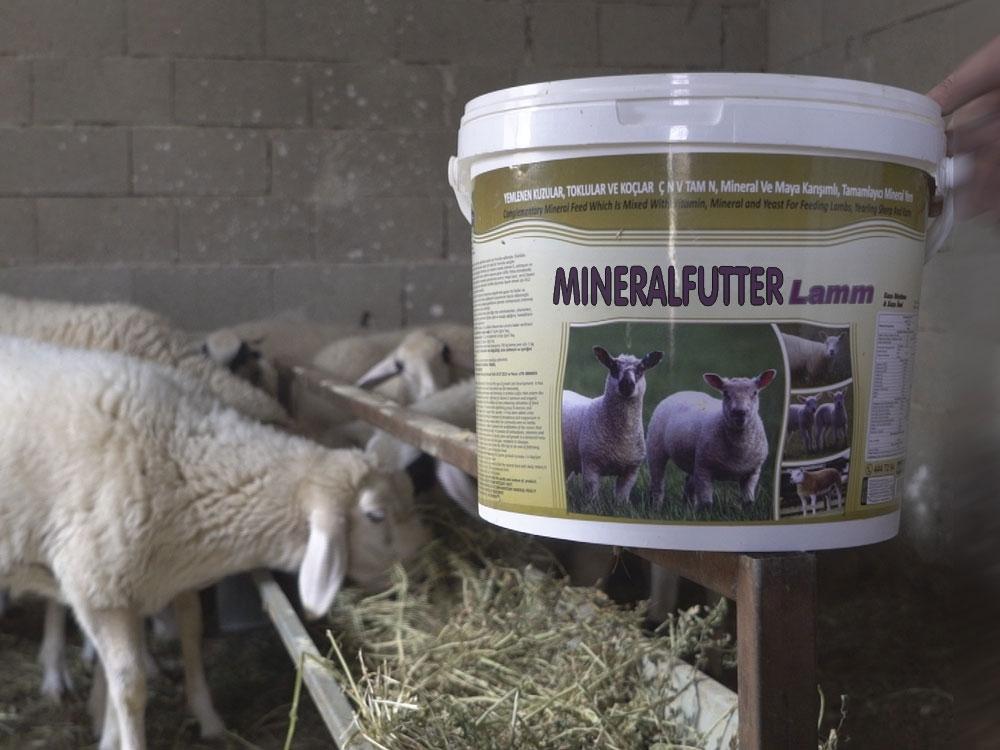 Farmann Mineralfutter Lamm